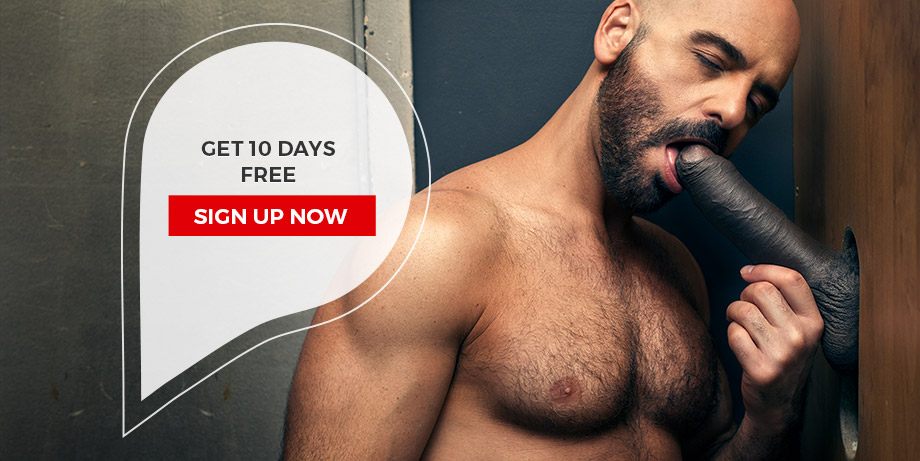 Get 10 days FREE! Sign up now.